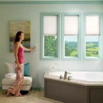 Lutron_honeycomb_shades1